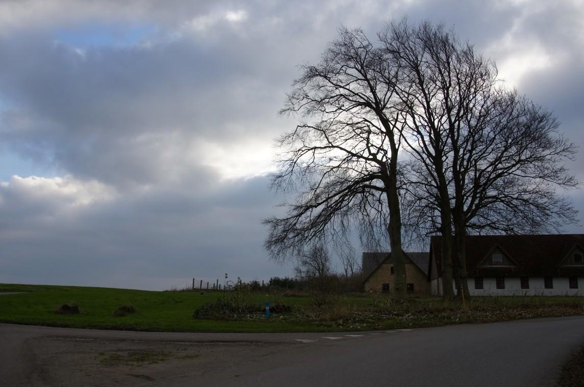 Vinterveje - winter roads