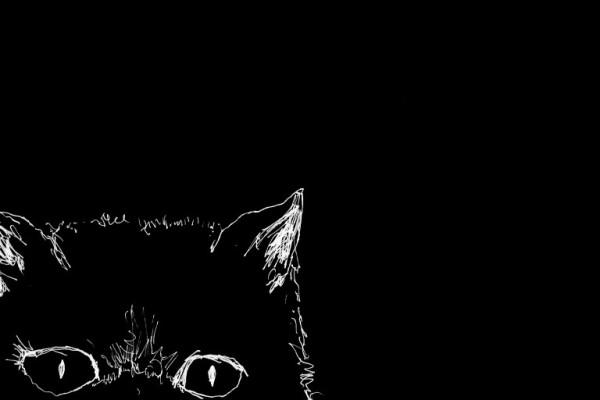 Cheshire Cat in the corner