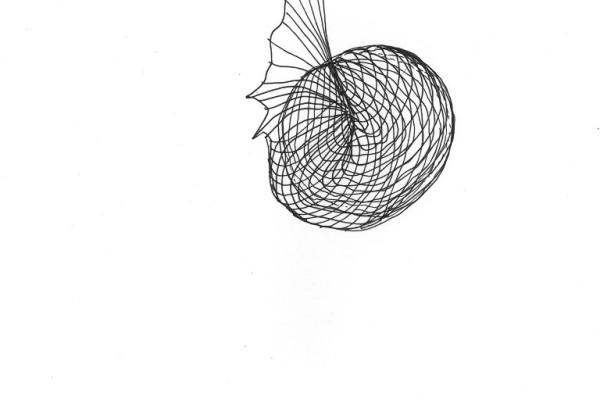 doodles by Fiske